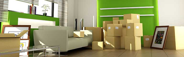 Residential Removals Cammeray